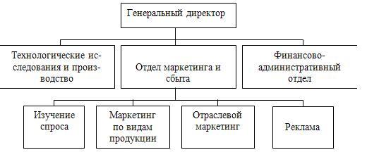Структура организации, ориентированной на разделение функций